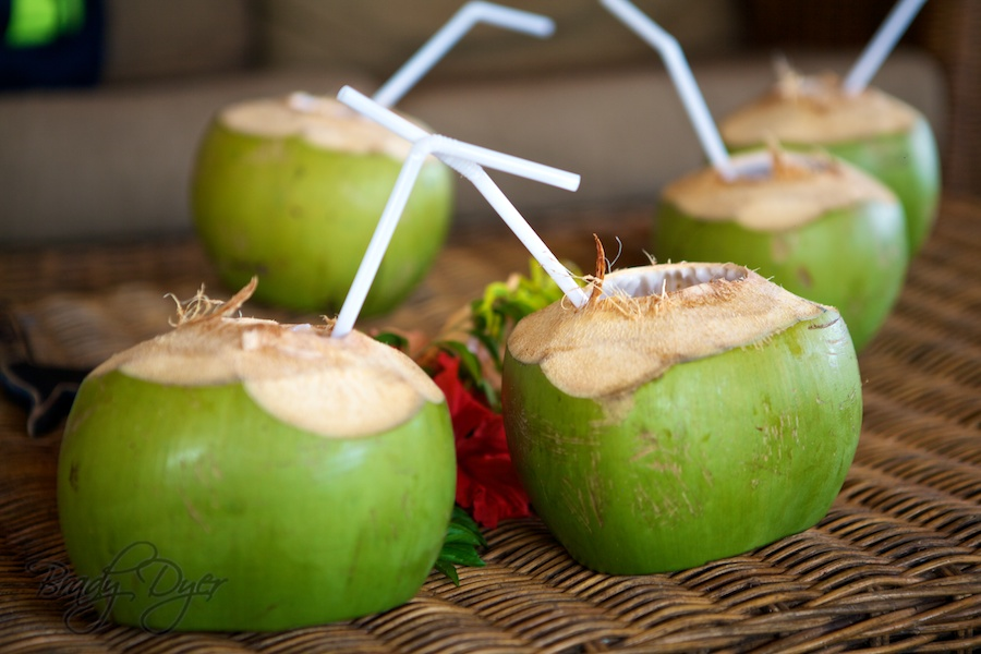 Coconuts on arrival at Viwa Island Resort