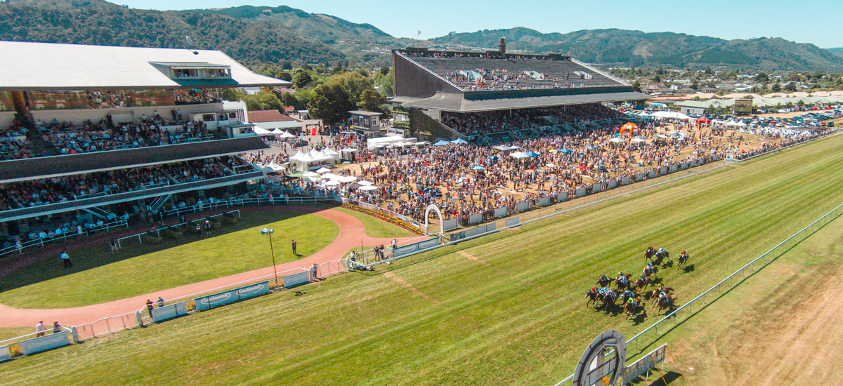 wellington-cup-aerial-crowd-horses