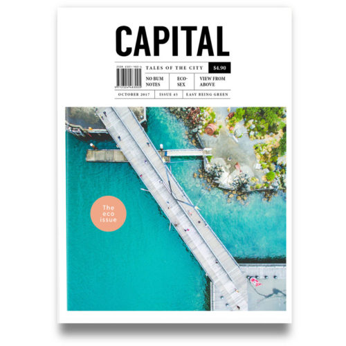 capital-magazine-cover-brady-dyer-drone
